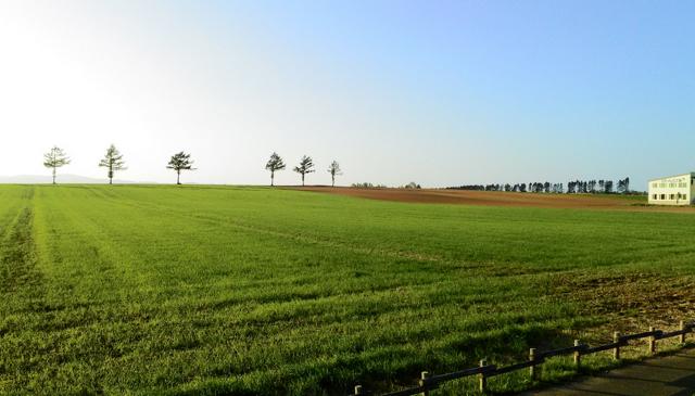 paysagefurano
